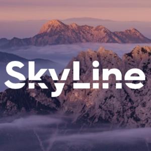 forno skyline electrolux professional