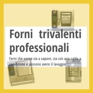 Forni a convezione vapore professionali