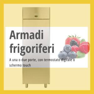 Armadi frigo professionali