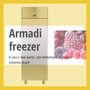 Armadi freezer professionali