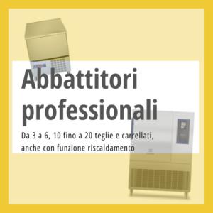 Abbattitori di temperatura professionali